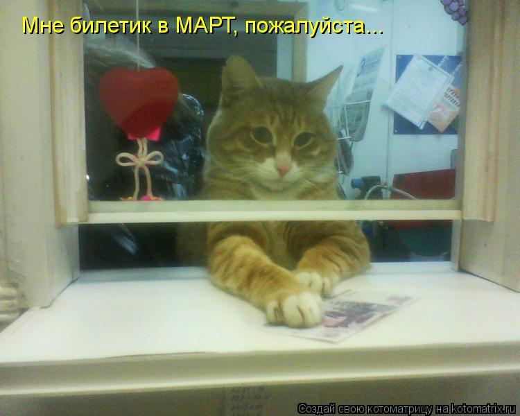 Котоматрица: Мне билетик в МАРТ, пожалуйста...