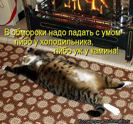Котоматрица: В обмороки надо падать с умом -  либо у холодильника,  либо уж у камина!