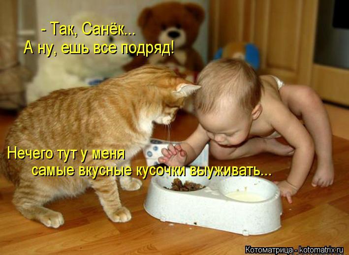 Котоматрица: самые вкусные кусочки выуживать... Нечего тут у меня  - Так, Санёк...   А ну, ешь все подряд!