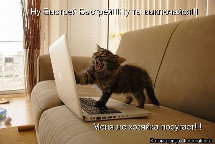 Котоматрица: Ну Быстрей,Быстрей!!!Ну ты выключайся!!! Меня же хозяйка поругает!!!