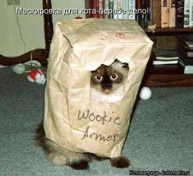 Котоматрица: Маскировка для кота-первое дело!!