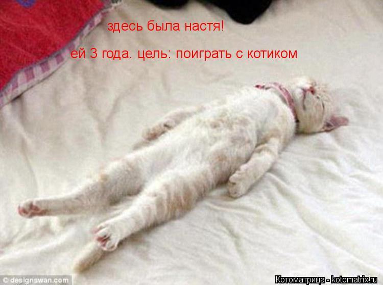 Котоматрица: здесь была настя! ей 3 года. цель: поиграть с котиком