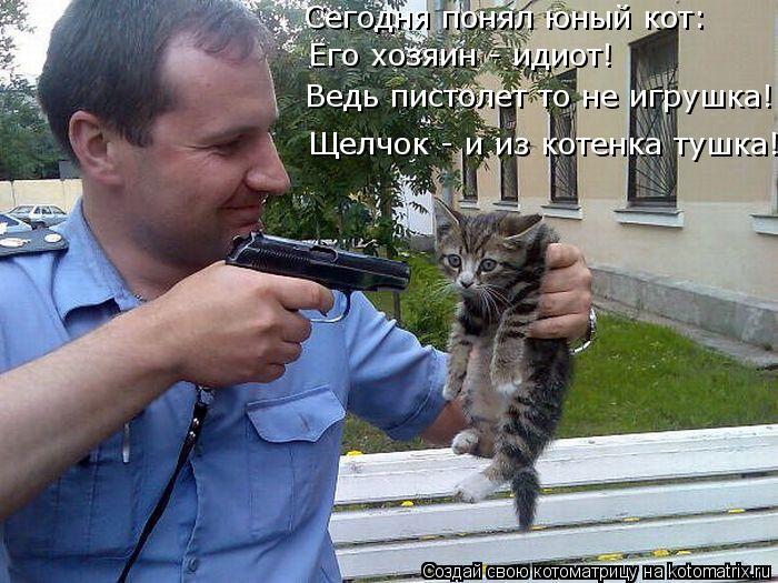 Котоматрица: Сегодня понял юный кот: Его хозяин - идиот! Ведь пистолет то не игрушка! Щелчок - и из котенка тушка!