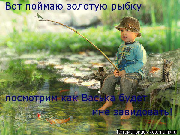Котоматрица: Вот поймаю золотую рыбку посмотрим как Васька будет мне завидовать!