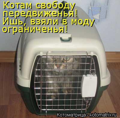Котоматрица: Котам свободу передвиженья! Ишь, взяли в моду ограниченья!