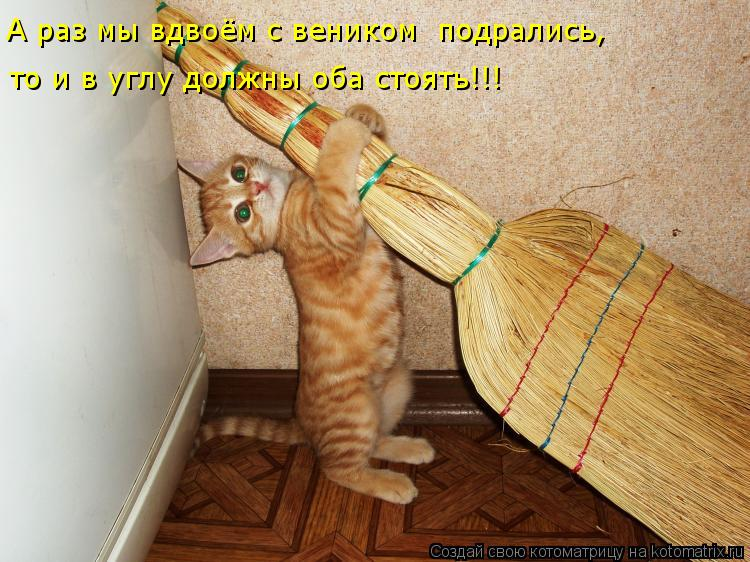 Котоматрица Kotomatritsa_Y1