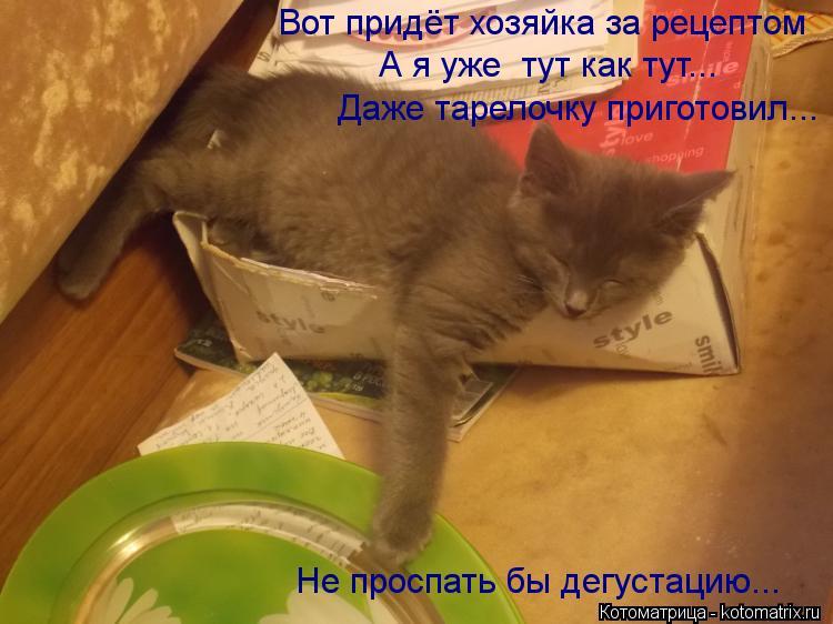Котоматрица: Вот придёт хозяйка за рецептом А я уже  тут как тут... Даже тарелочку приготовил... Не проспать бы дегустацию...