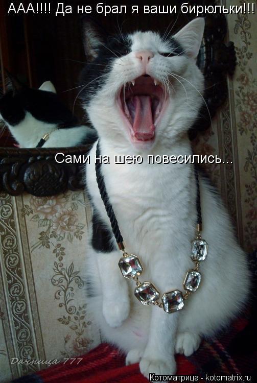 Котоматрица: ААА!!!! Да не брал я ваши бирюльки!!! Сами на шею повесились...