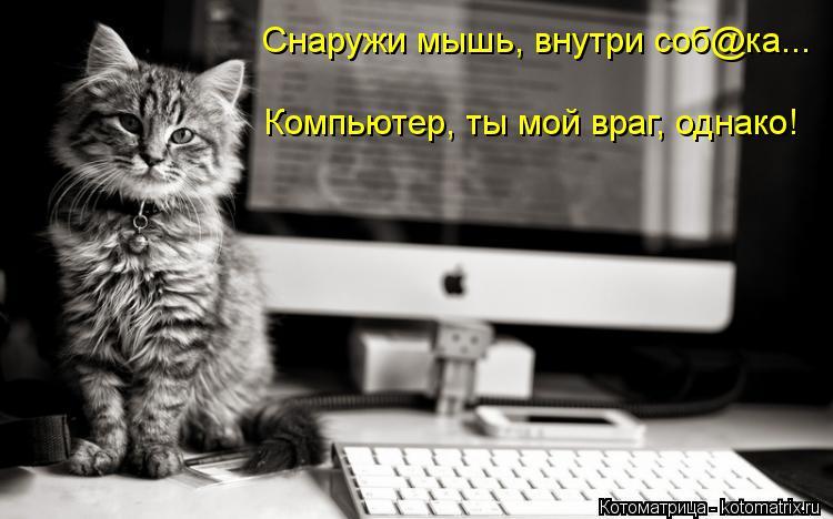 Котоматрица: Снаружи мышь, внутри соб@ка... Компьютер, ты мой враг, однако!