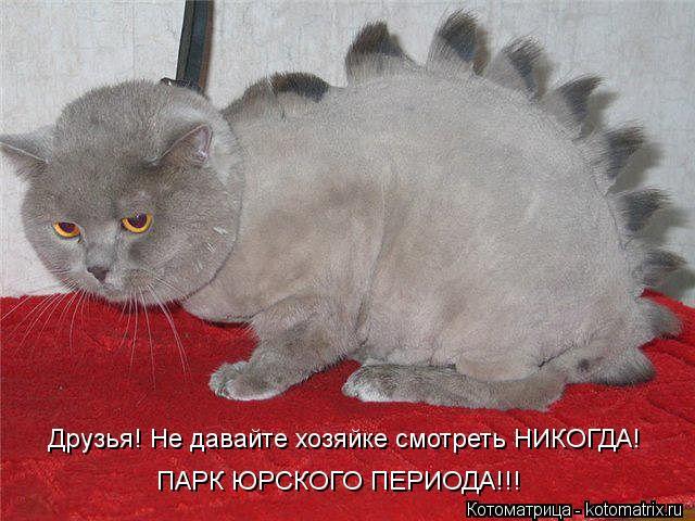 Котоматрица: Друзья! Не давайте хозяйке смотреть НИКОГДА! ПАРК ЮРСКОГО ПЕРИОДА!!!