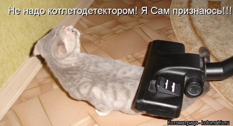 Котоматрица: Не надо котлетодетектором! Я Сам признаюсь!!!!