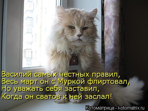 Котоматрица: Василий самых честных правил, Весь март он с Муркой флиртовал, Но уважать себя заставил, Когда он сватов к ней заслал!