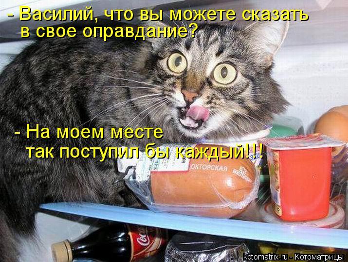 Котоматрица: - Василий, что вы можете сказать  в свое оправдание? - На моем месте  так поступил бы каждый!!!