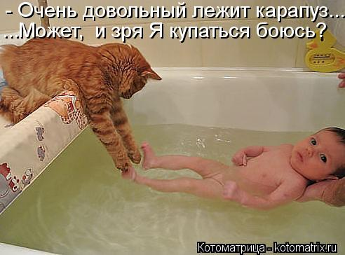 Котоматрица: - Очень довольный лежит карапуз... ...Может,  и зря Я купаться боюсь?