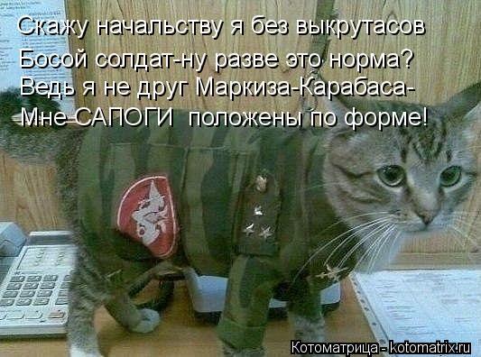 Котоматрица: Скажу начальству я без выкрутасов Босой солдат-ну разве это норма? Мне САПОГИ  положены по форме! Ведь я не друг Маркиза-Карабаса-