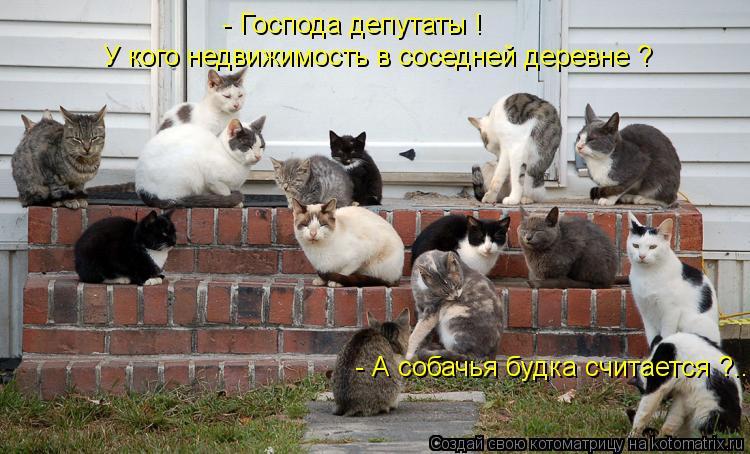 Котоматрица: - Господа депутаты ! У кого недвижимость в соседней деревне ? - А собачья будка считается ?....