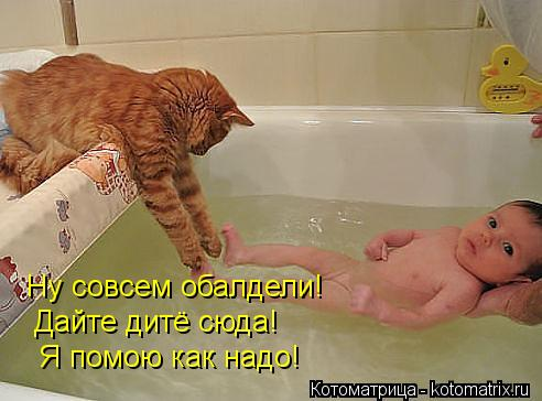 Котоматрица: Ну совсем обалдели! Дайте дитё сюда! Я помою как надо!