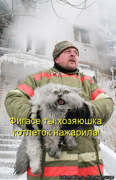 Котоматрица: Фигасе,ты,хозяюшка, котлеток нажарила!