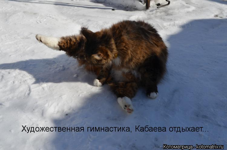 Котоматрица: Художественная гимнастика, Кабаева отдыхает...