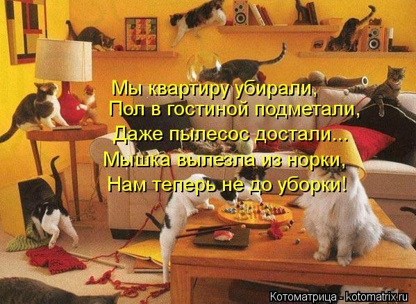 Котоматрица: Мы квартиру убирали, Даже пылесос достали... Мышка вылезла из норки, Нам теперь не до уборки! Пол в гостиной подметали,