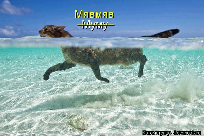Котоматрица: Муму ______ Мявмяв