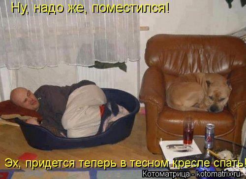 Котоматрица: Ну, надо же, поместился! Эх, придется теперь в тесном кресле спать!