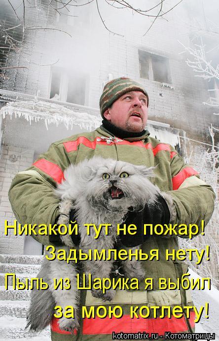 Котоматрица: Никакой тут не пожар!  Задымленья нету! Пыль из Шарика я выбил  за мою котлету!