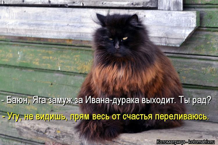Котоматрица: - Баюн, Яга замуж за Ивана-дурака выходит. Ты рад? - Угу, не видишь, прям весь от счастья переливаюсь.