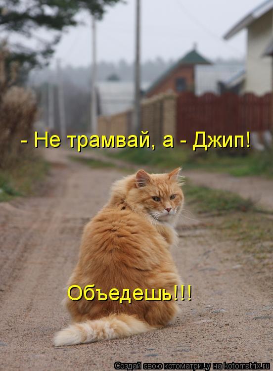 Котоматрица: - Не трамвай, а - Джип! Объедешь!!!