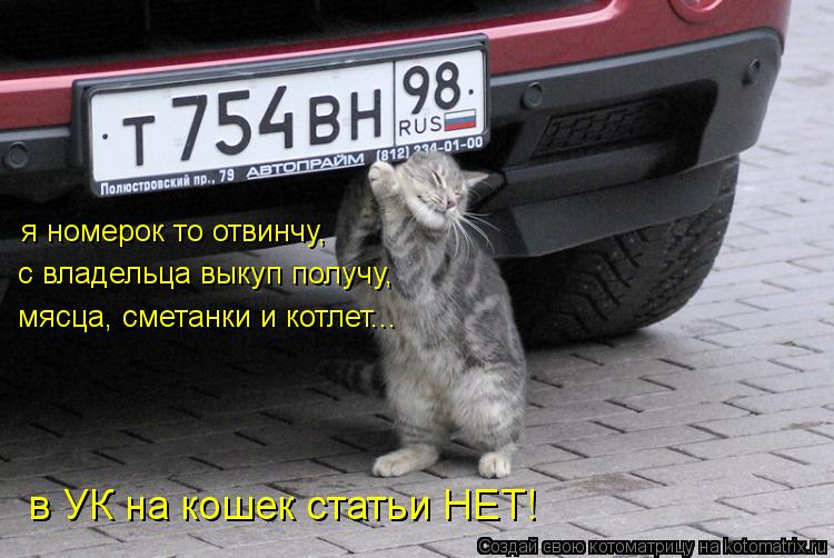 Котоматрица: я номерок то отвинчу, с владельца выкуп получу, мясца, сметанки и котлет... в УК на кошек статьи НЕТ!