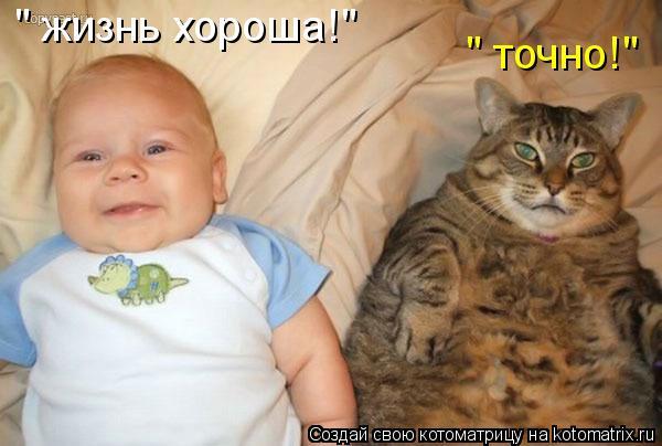 "Котоматрица: "" жизнь хороша!"" "" точно!"""