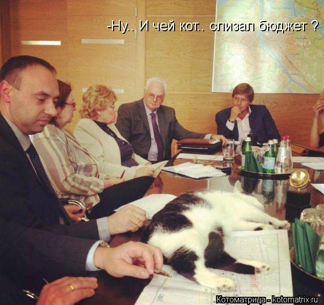 Котоматрица: -Ну.. И чей кот.. слизал бюджет ?