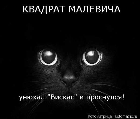"Котоматрица: КВАДРАТ МАЛЕВИЧА унюхал ""Вискас"" и проснулся!"