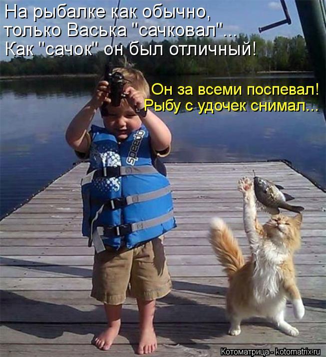"""Котоматрица: На рыбалке как обычно, только Васька """"сачковал""""... Как """"сачок"""" он был отличный! Он за всеми поспевал! Рыбу с удочек снимал..."""