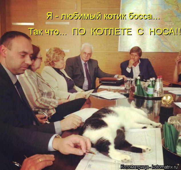 Котоматрица: Я - любимый котик босса... Так что...  ПО  КОТЛЕТЕ  С  НОСА!!