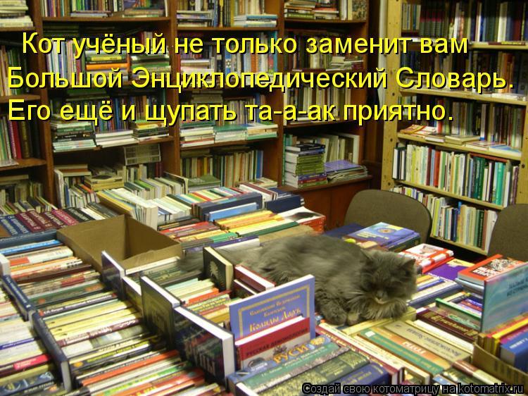 Котоматрица: Большой Энциклопедический Словарь. Кот учёный не только заменит вам  Его ещё и щупать та-а-ак приятно.