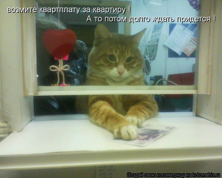 Котоматрица: возмите квартплату за квартиру ! А то потом долго ждать придется !