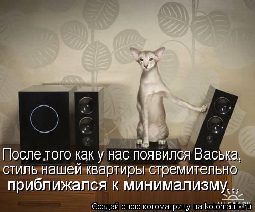Котоматрица: После того как у нас появился Васька, стиль нашей квартиры стремительно приближался к минимализму...