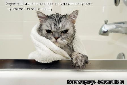 Котоматрица: Хорошо помылся и хозяева хоть чё мне покупают ну конечто то что я зохочу