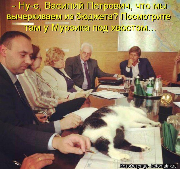 Котоматрица: - Ну-с, Василий Петрович, что мы вычеркиваем из бюджета? Посмотрите там у Мурзика под хвостом...