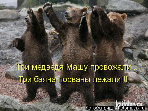 Котоматрица: Три медведя Машу провожали.... Три баяна порваны лежали!!!