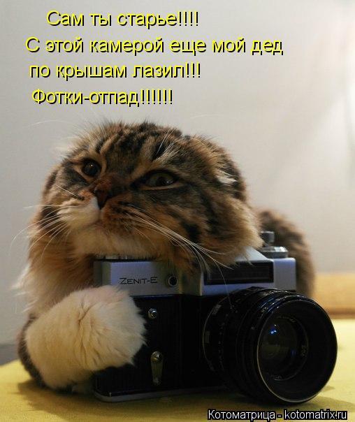 Котоматрица: Сам ты старье!!!! C этой камерой еще мой дед по крышам лазил!!! Фотки-отпад!!!!!!
