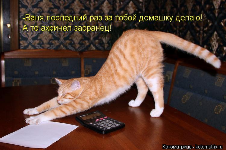 Котоматрица: -Ваня,последний раз за тобой домашку делаю! А то ахринел засранец!
