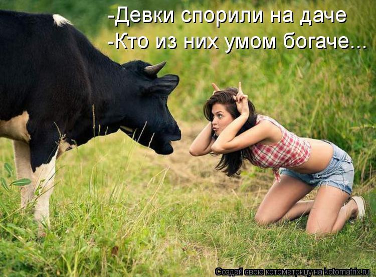 Котоматрица: -Девки спорили на даче  -Кто из них умом богаче...