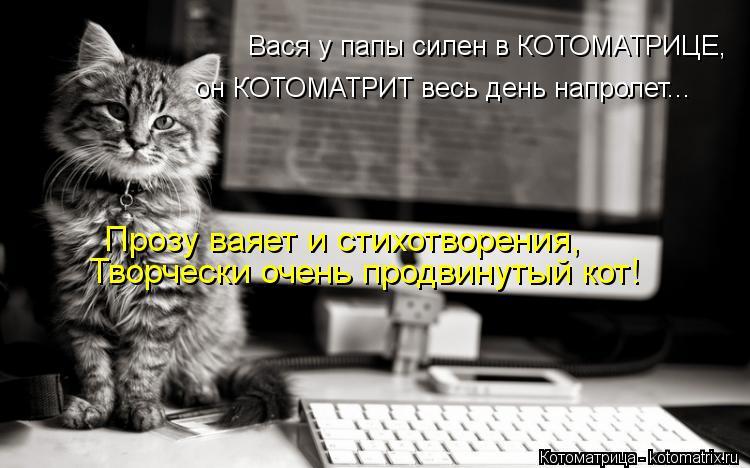 Котоматрица: он КОТОМАТРИТ весь день напролет... Вася у папы силен в КОТОМАТРИЦЕ,  Прозу ваяет и стихотворения,  Творчески очень продвинутый кот!