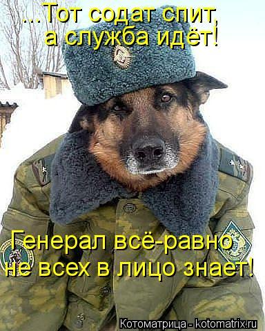 Котоматрица: ...Тот содат спит,  а служба идёт! Генерал всё-равно не всех в лицо знает!