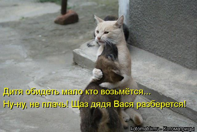 Котоматрица: Дитя обидеть мало кто возьмётся... Ну-ну, не плачь! Щаз дядя Вася разберется!