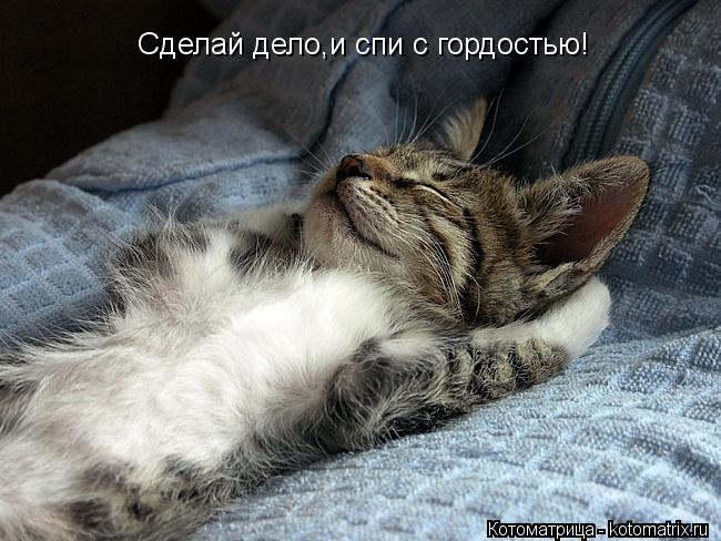 Котоматрица: Сделай дело,и спи с гордостью!