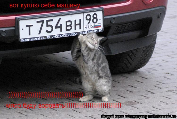 Котоматрица: вот куплю себе машину  мясо буду воровать!!!!!!!!!!!!!!!!!!!!!!!!!!!!!! :)))))))))))))))))))))))))))))))))))