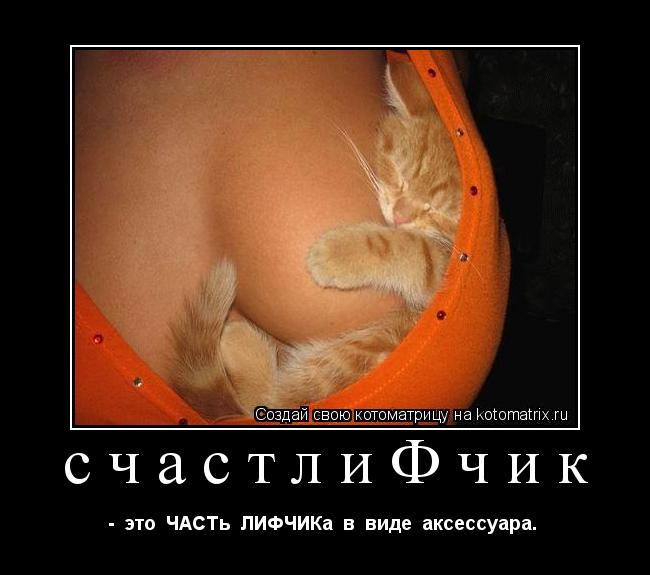 Котоматрица: счастлиФчик -  это  ЧАСТь  ЛИФЧИКа  в  виде  аксессуара.